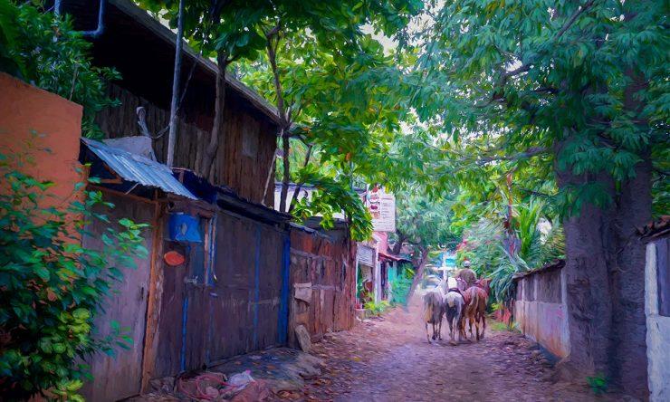 Tamarindo Downtown back road