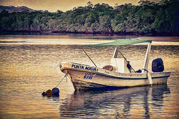 costa-rica-boat-punta-aguja-bay-fishing-poto-art