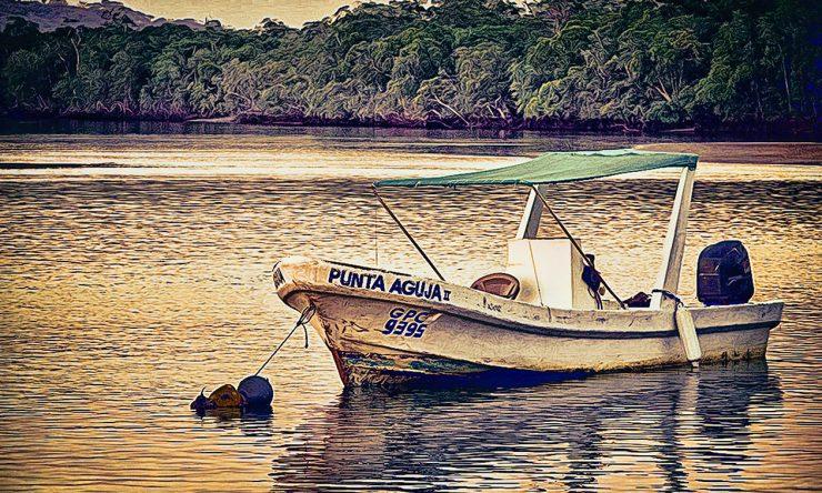 Panga Moored in the Estuary